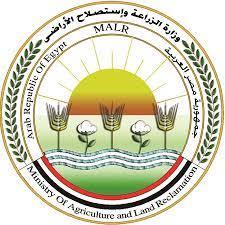 الزراعة: تحصين أكثر من 5 99638