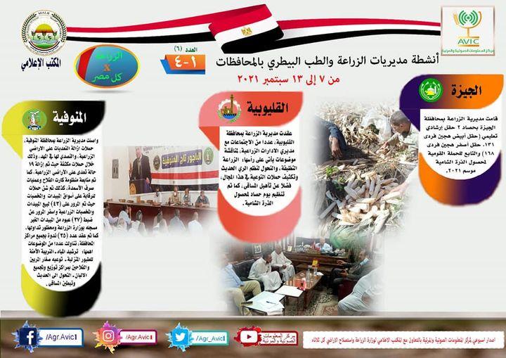 بيان صادر عن وزارة الزراعة واستصلاح الأراضي: » انفوجراف وفيديو  الزراعة في كل مصر العدد السادس 30964 1